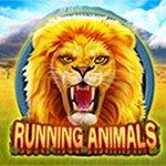 Running Animals