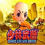 Shao Lin Wu Seng