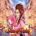 Rose of Venice