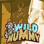 Wild Mummy Slots